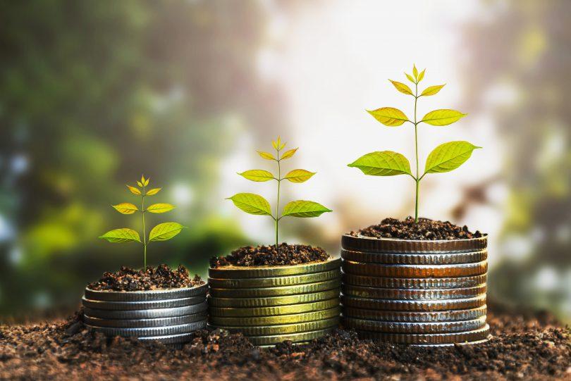 Secretaria de Empreendedorismo e Banco da Amazônia firmam parceria para concessão de microcrédito