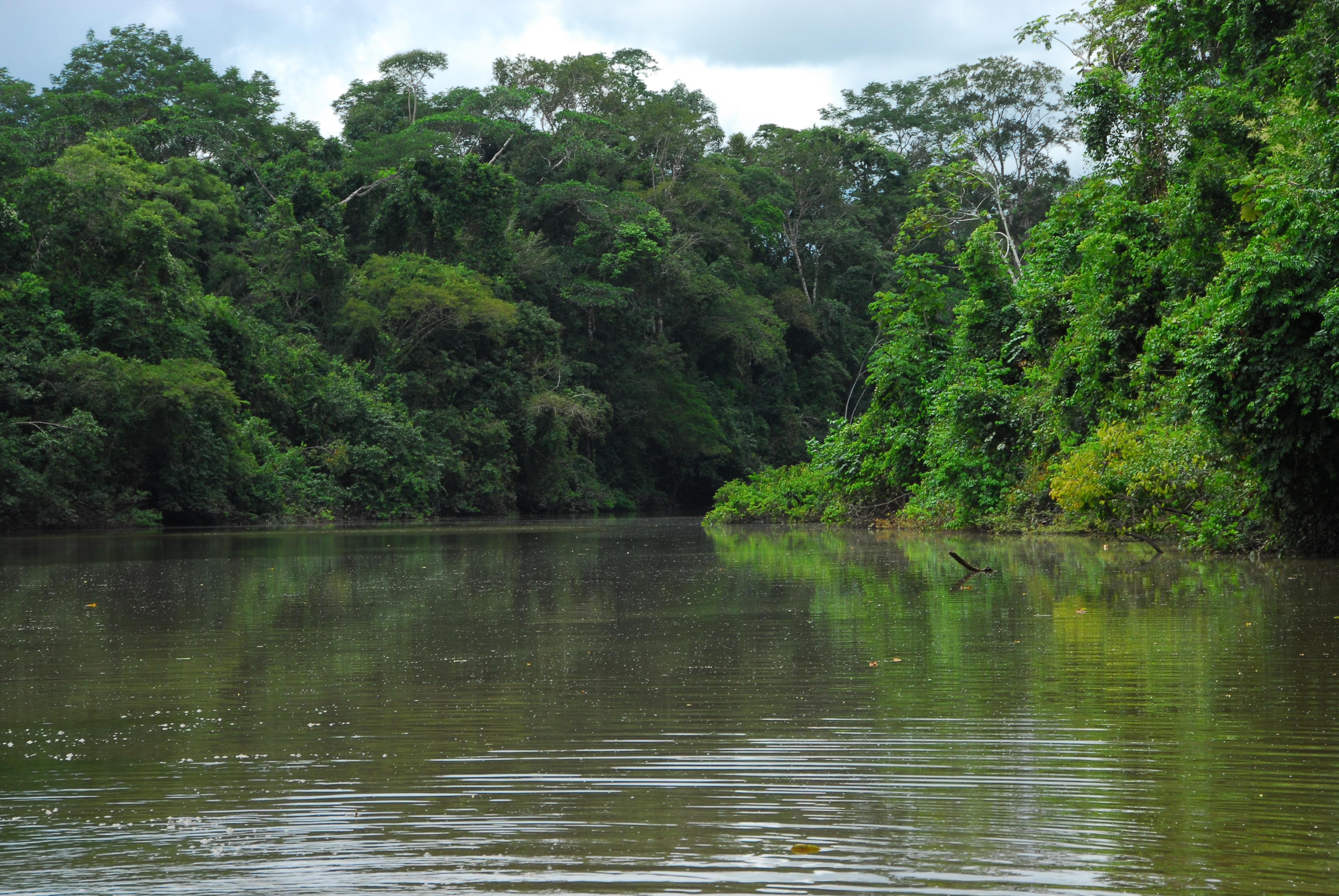 Meio Ambiente dá posse a 50 conselheiros das APAs Lago do Amapá e Igarapé São Francisco