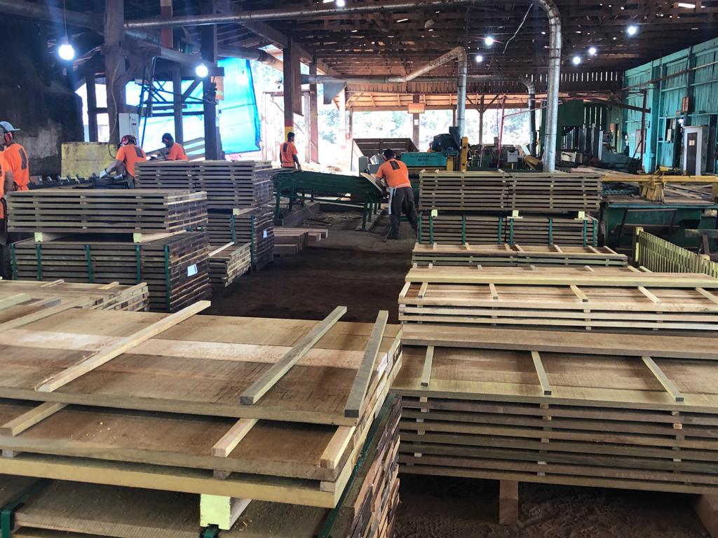 Técnicos do Meio Ambiente fazem intercâmbio sobre concessão florestal em floresta nacional de Rondônia