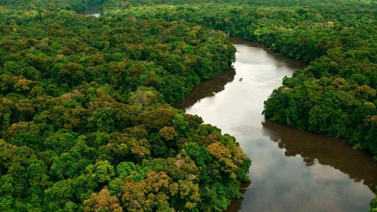 Eventos on-line marcam programação do Mês do Meio Ambiente