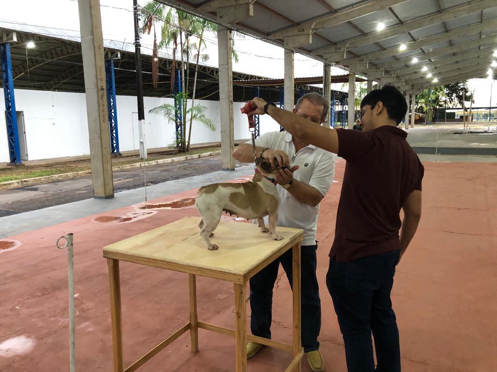 Exposição de Cães de Raça acontece neste sábado, no Parque de Exposições