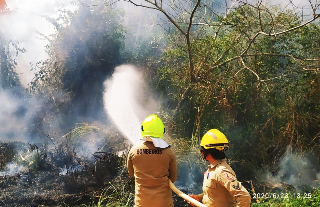 Estado intensifica fiscalização e combate ao desmatamento e queimadas