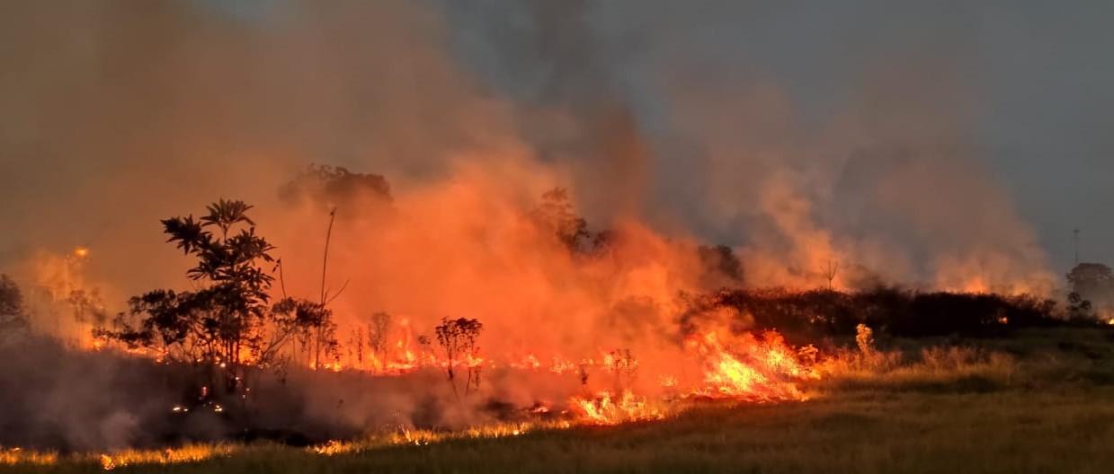Comissão Estadual de Gestão de Riscos Ambientais define força-tarefa para combater queimadas urbanas