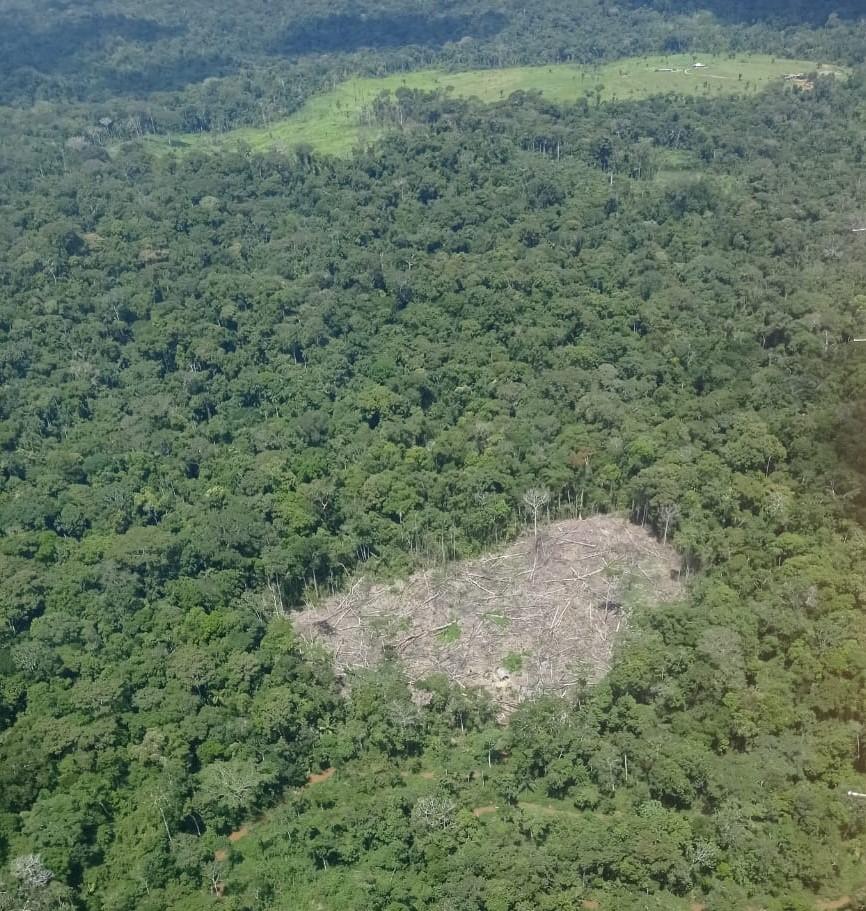 Comitê de Ações Integradas de Meio Ambiente discute ocupações irregulares nas florestas